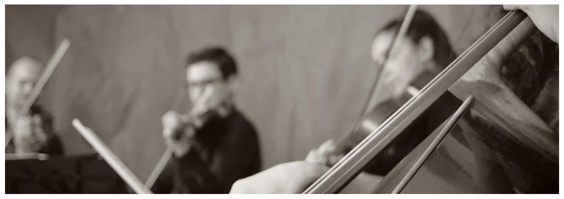 TTu Carrito Musical contrata musica en vivo de forma online