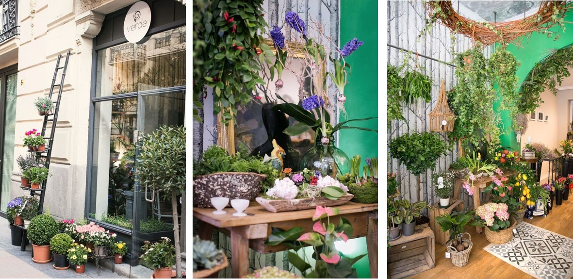 Verde, tienda decoración flores Madrid